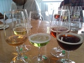CAMRA's Tasting Panels - what they do