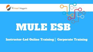 Mule Esb Book