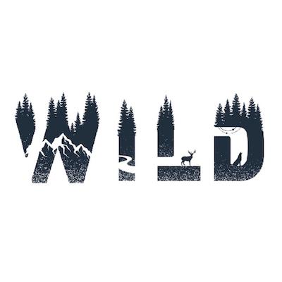 Into the Wild 2022