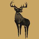 Black Deer Festival 2018 - Payment Plan