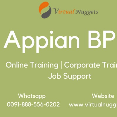 Appian BPM Online Training Institution