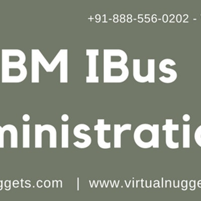 IBM IBUS Online Training Institute