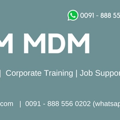 IBM InfoSphere MDM Training