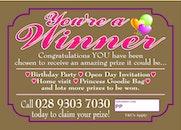 "You're a ""Winner"" Ticket (PRINCESS)"
