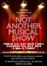 Not Another Musical Show