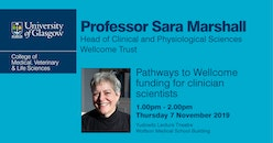 Pathways to Wellcome funding for clinician scientists - Professor Sara Marshall